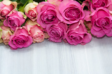 Bunch of beautiful pink roses on light background.