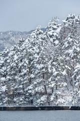 長野県大町市 雪景色の木崎湖
