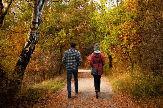Spaziergang im Herbst - Wandern im Wald