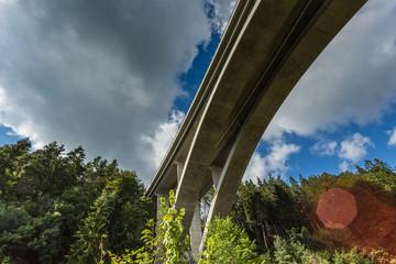 tall highway bridge between forest