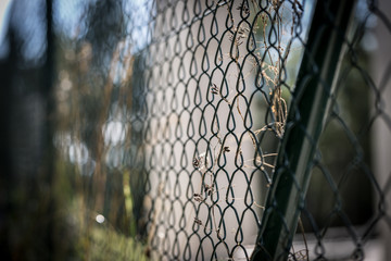 chain link fence around restricted area
