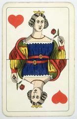 Queen of Hearts Rose