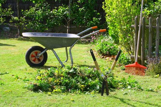 brouette de déchets verts dans le jardin