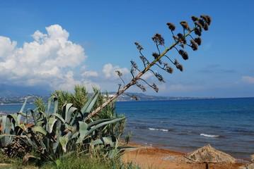 Greece - Kefalonia - Xi Beach