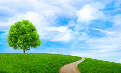Poster Trees Green summer landscape scenic view wallpaper. Beautiful wallpaper. Solitary tree on grassy hill and blue sky with clouds. Lonely tree springtime. Green planet earth. Photo stock.