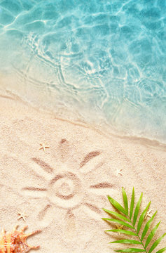 Summer background with green palm leaf and shell. Beach texture. Copy space.