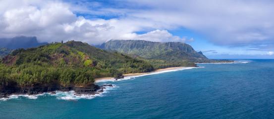 Wall Mural - Hawaiian mountains and ocean