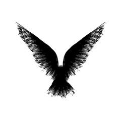 Black grunge raven silhouette