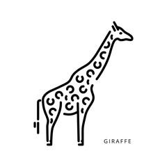Outline vector logo drawing giraffe African animal