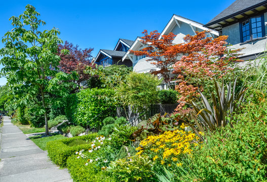 Delicately landscaped front yard of residential houses