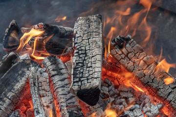 Fire in macro view
