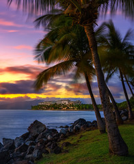 Wall Mural - Hawaii resort with palm trees and mountains