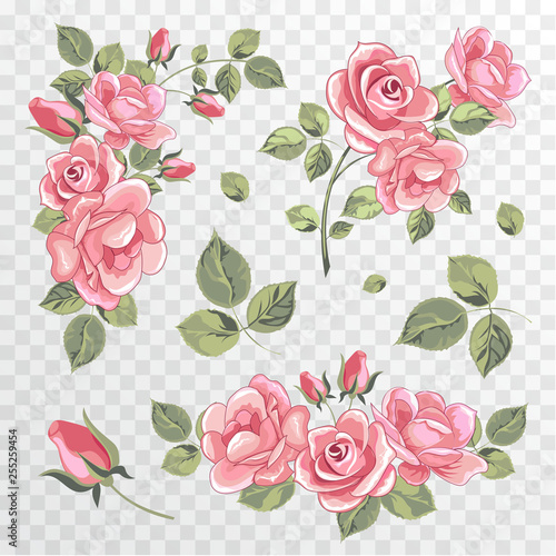 Roses on a transparent background  Set of bouquets of spring