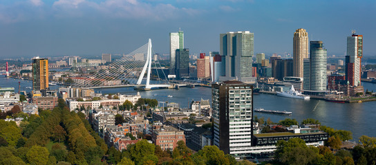 Deurstickers Rotterdam Panorama cityscape of Rotterdam, The Netherlands, with the city park in the foreground and financial district and city centre including the Erasmus bridge in the background among the wider port area