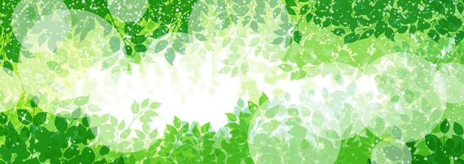 緑の植物と木漏れ日