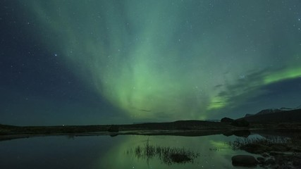 Wall Mural - Aurora Borealis Over Pond In Iceland Timelapse