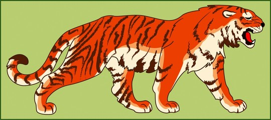 TIGER PREDATORY ANIMAL