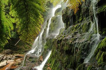 Russell Falls in Mount Field National Park, Tasmania, Australia