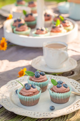 Sweet chocolate muffin served with coffee in garden