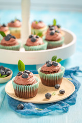 Homemade cupcake with blueberries and chocolate cream