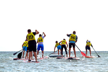 Group of people compete in rowing on stand up paddle board (SUP) on sea. View from the back