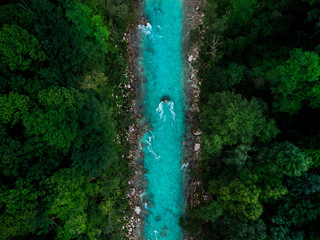 Recess Fitting Forest river Blue river flowing in forest at spring