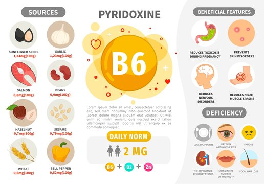 Infographics Vitamin B6. Products containing vitamin. Daily norm. Symptoms of deficiency. Vector medical poster.