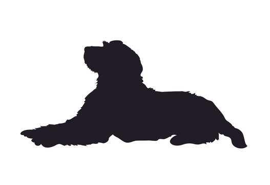 dog lies, silhouette, vector