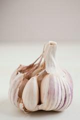 Bulbs of garlic- on bright background