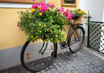 Colorful flowers on bicycle as decoration
