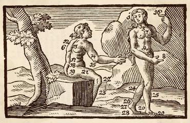 Man Woman 1746