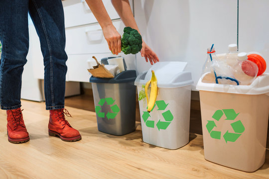 Waste sorting at home. Cropped view of woman putting broccoli in the garbage bin. Colorful trash bins for sorting waste in the kitchen