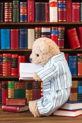 Bedtime Story Library / Cute teddy bear in nostalgic striped pajamas sitting on stack of books in front of bookshelf, reading at open book in his hands