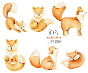 Collection of watercolor cute foxes illustration, hand drawn isolated on a white background