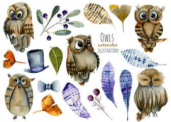 Collection of watercolor cute owls, feathers and forest plants illustration, hand drawn isolated on a white background