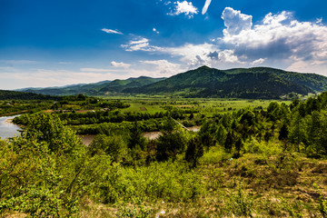 Landscape view of the mountain river with green vegetation trees bushes and grass and blue sky
