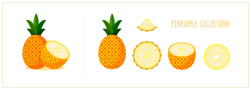 Vector pineapple icons set. Cartoon pineapple flat design. Whole, half, sliced ananas isolated on white background. Fresh, sweet and exotic fruit. Vector illustration. EPS 10