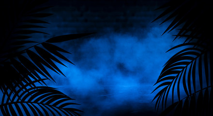 Background of the dark room, tunnel, corridor, neon light, lamps, tropical leaves. Abstract...