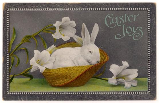 White Rabbit Easter 1912