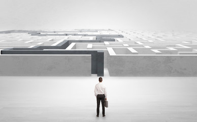 Wall Mural - Businessman getting ready to enter the labyrinth with stated road concept