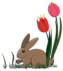 Rabbit with Spring Flowers