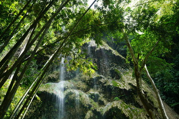 View at a waterfall in Cebu, Philippines