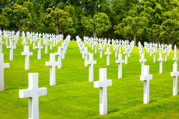 Fototapete - Military cemetery with crosses on green grass
