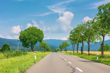 countryside road in to the mountains. trees and rural fields on both sides along the way. wonderful sunny weather with fluffy clouds on a blue summer sky. travel by car concept, explore slovakia