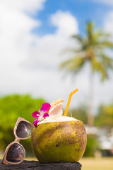 Summer tropical cocktail in fresh green coconut with two colorful umbrellas on palm tree leaves background