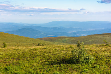 beautiful summer landscape in mountain. rolling hills with alpine meadows in evening light. ridge in the distance
