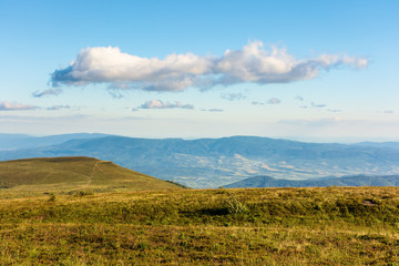 mountain scenery in summer afternoon. fluffy cloud on a blue sky above the grassy alpine meadow on a hill. beautiful carpathian landscape in evening light