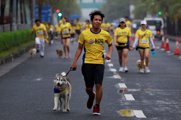 Pet owners run with their dogs amidst the rain during a fun run for charity in Pasay City