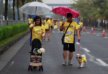Pet owners protect their dogs from the rain during a fun run for charity in Pasay City