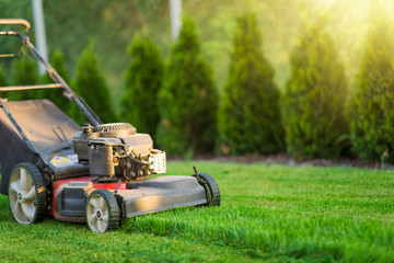 Lawn mower cutting green grass
